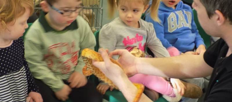 A Visit From Zoo Lab
