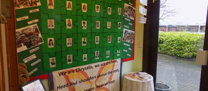 The Chrysalis Team